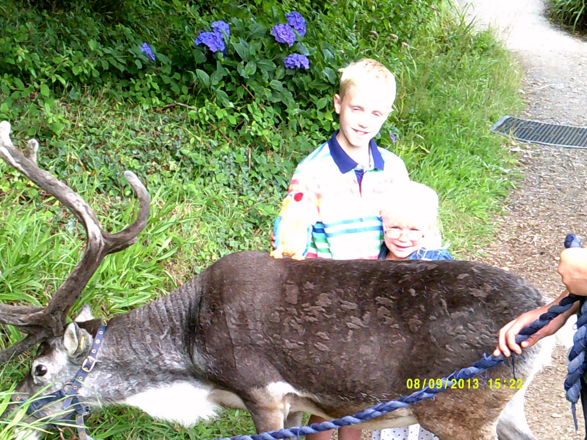 kernow u0026 39 s adventure day trip at dartmoor zoo