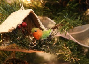 Christmas Family Breaks at Crylla Valley Cottages