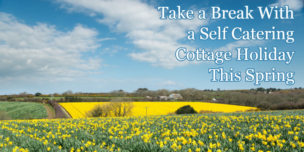 self catering cottage holiday spring